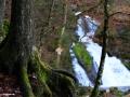 14_schwarzwald